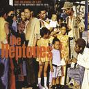 The Meaning Of Life: Best Of The Heptones 1966-1976 thumbnail