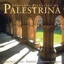 Palestrina: Masses & Motets thumbnail