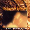 Ashes In The Brittle Air thumbnail