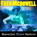 Essential Blues Masters thumbnail