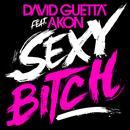 Sexy B**ch (Remixes 1) thumbnail
