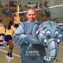 Liability thumbnail