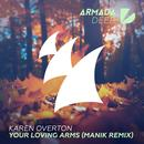 Your Loving Arms (Remix) (Single) thumbnail