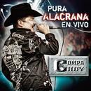 Pura Alacrana En Vivo thumbnail