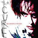 Bloodflowers thumbnail