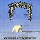 Extreme Cold Weather thumbnail