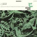Byrd In Flight (Remastered) thumbnail