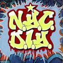 N.Y.C. D.I.Y. thumbnail