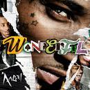 Wonderful (Single) thumbnail