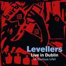 A Curious Life (Live In Dublin) thumbnail