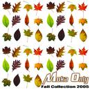 Fall Collection 2005 thumbnail