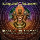 Heart Of The Shamans: Ceremonial Medicine Songs thumbnail
