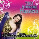 Vestida Y Alborotada thumbnail