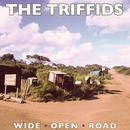 Wide Open Road (Single) thumbnail