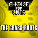 Re-Recorded Choice Pop Cuts thumbnail