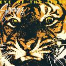 Eye Of The Tiger thumbnail