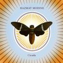 Cicada thumbnail