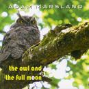 The Owl and the Full Moon thumbnail