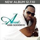 Kiss Goodbye (Radio Single) thumbnail
