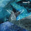 Perfect Dive (Radio Edit) (Single) thumbnail