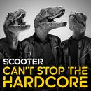 Can't Stop The Hardcore thumbnail