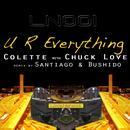 UR Everything thumbnail