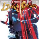 Everything Is Possible: The Very Best Of Living Colour thumbnail