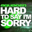 Hard to Say I'm Sorry (More Remixes) thumbnail