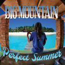 Perfect Summer thumbnail