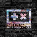 Forbidden Voices (Single) thumbnail