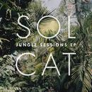 Jungle Sessions EP thumbnail
