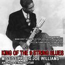 Mississippi's Big Joe Williams And His Nine-String Guitar thumbnail