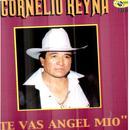 Te Vas Angel Mio (1999) thumbnail
