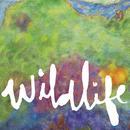 Wildlife  thumbnail