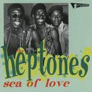 Sea Of Love thumbnail