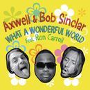 What A Wonderful World (Single) thumbnail