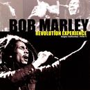 Revolution Experience: Singles Collection 1970-71 thumbnail