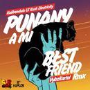 Punany A Mi Best Friend (Kalibandulu X Kush Electricity Remix) (Single) thumbnail