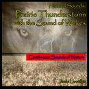 Natural Sounds: Prairie Thunderstorm with the Sound of Wolves thumbnail