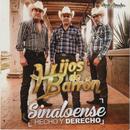 Sinaloense Hecho Y Derecho thumbnail
