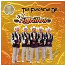 Tus Favoritas De... Los Tigrillos thumbnail