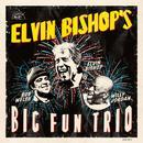 Elvin Bishop's Big Fun Trio thumbnail