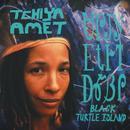 Black Turtle Island thumbnail