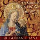 The Chants Of Christmas thumbnail