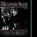 I Am The Blues thumbnail
