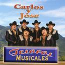 Tesoros Musicales thumbnail