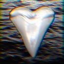 Teeth thumbnail