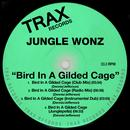 Bird In A Gilded Cage thumbnail