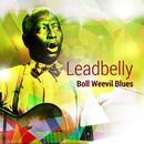 Boll Weevil Blues thumbnail