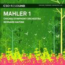 Mahler, G.: Symphony No. 1 thumbnail